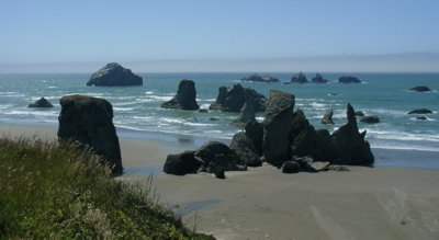 Oregon Coast 3